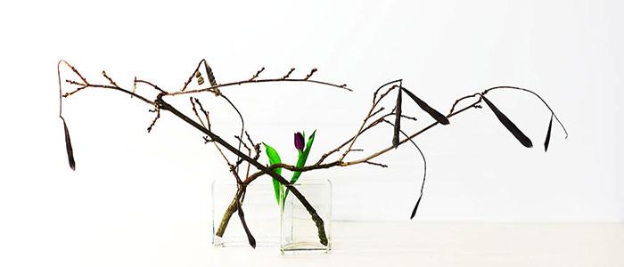 viertes Beispiel für Ikebana in Biberach