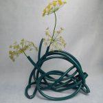Gartenschlauch und Dill